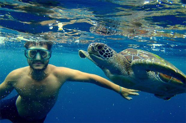 Buceano-con-tortugas