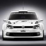 Volkswagen Polo R WRC 04