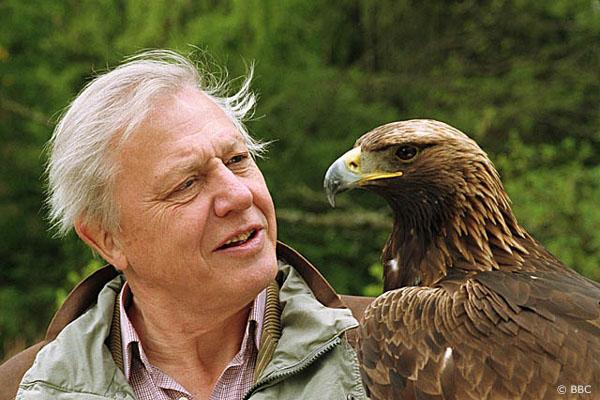Sir David Attenborough - Le célèbre scientifique et naturiste Sir David Attenborough dit que le yéti existe