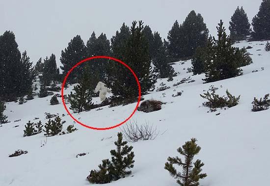 Esquiadores Yeti pirineo aragonés