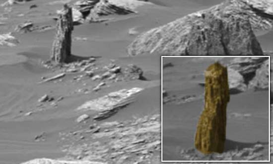 remains of a petrified tree on Mars