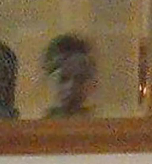 enfant fantôme lors d'anniversaires - Ils photographient le fantôme d'un enfant lors d'un anniversaire