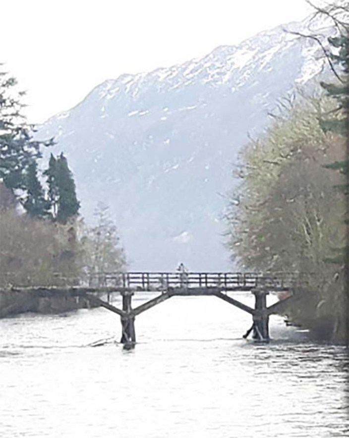 humanoid lake ness - Photograph a humanoid similar to an astronaut on a bridge in Loch Ness