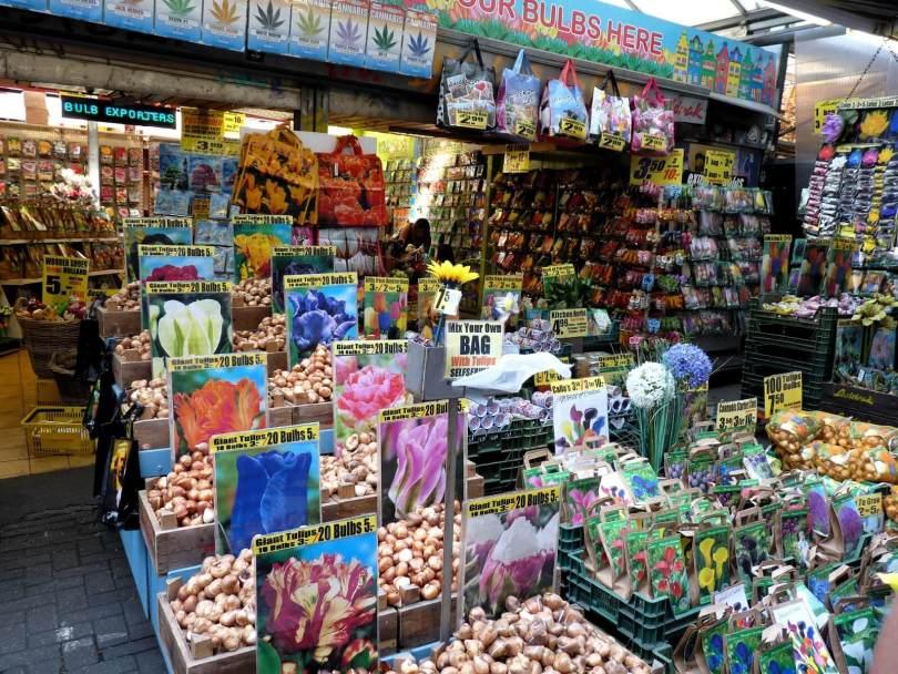Amesterdão Países Baixos Mercado de Flores Mundo Indefinido