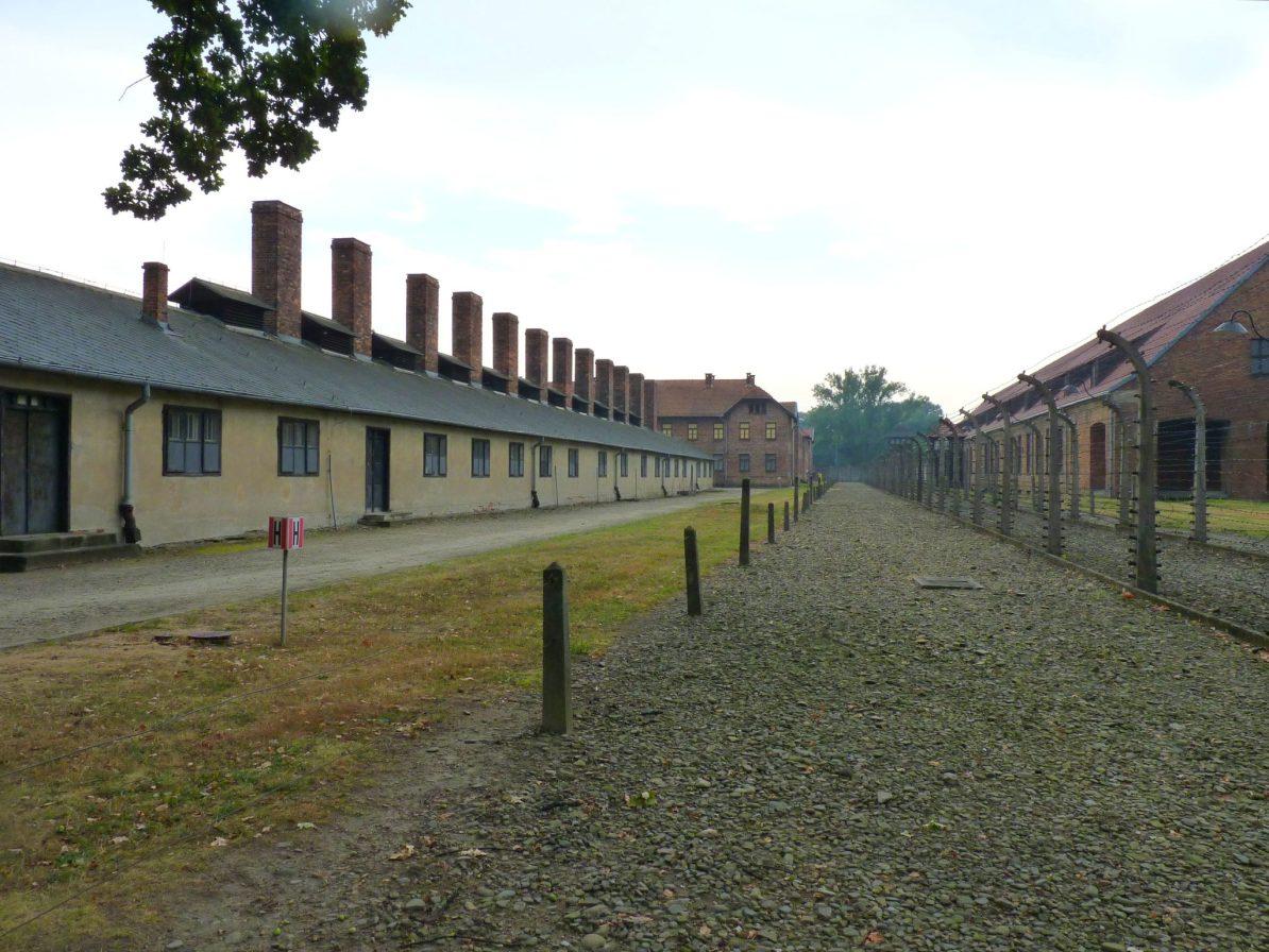 Auschwitz Cracóvia Polónia Mundo Indefinido 04