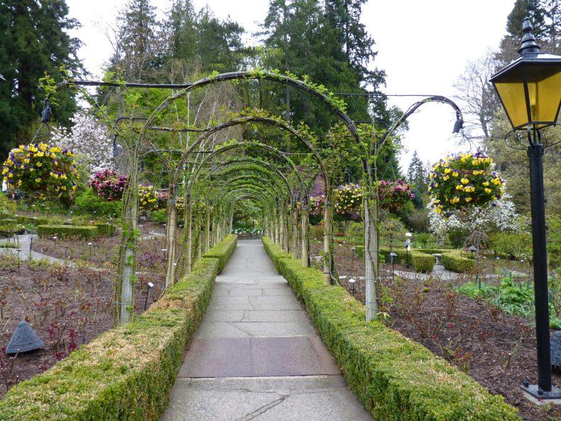 Butchart Gardens 18 Victoria Canadá Mundo Indefinido