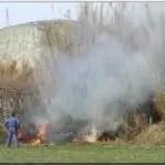 El delito de incendio por quemar rastrojos, matorral o pastos