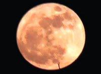 Super Luna y Orbe intermitente, 19 de marzo 2011