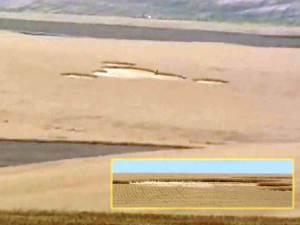 Agricultores de Washington descubren misteriosos círculos de la cosecha en campo de trigo – 01 de agosto 2012