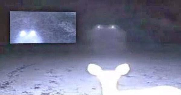 Misteriosas luces flotantes captadas en cámara en Cumbest Bluff
