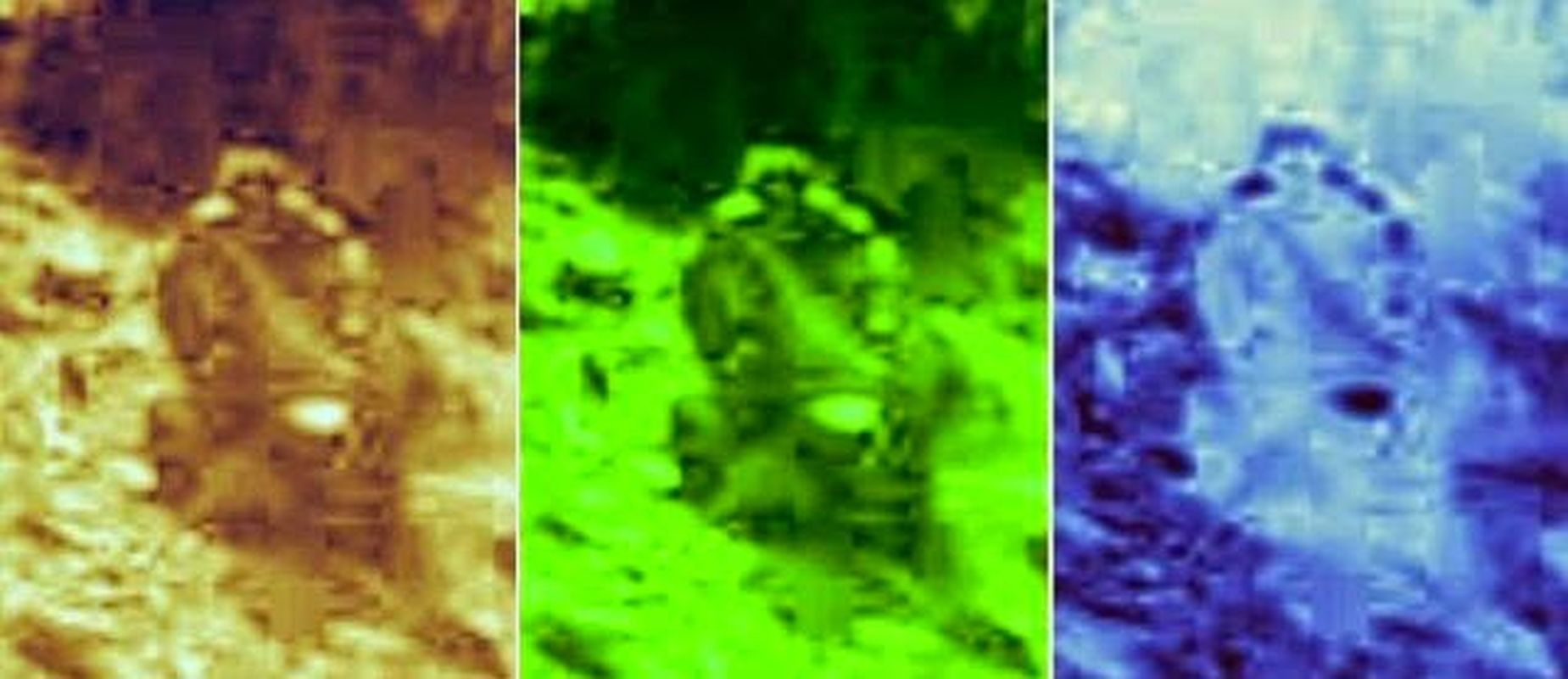 ¿Figura humanoide en un vehículo captada en Marte?
