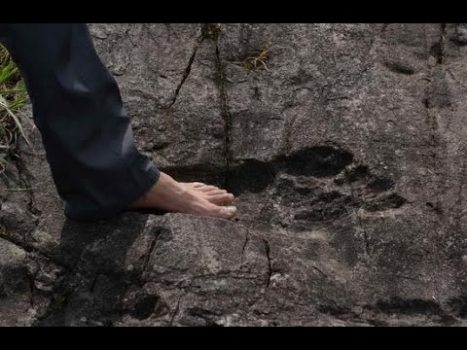 Encuentran el Fósil de una Huella Humana Gigante en China