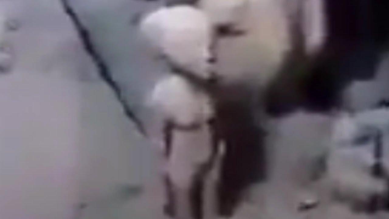 Estátua de un ALIEN en la Tumba de un Faraón Recién Descubierta
