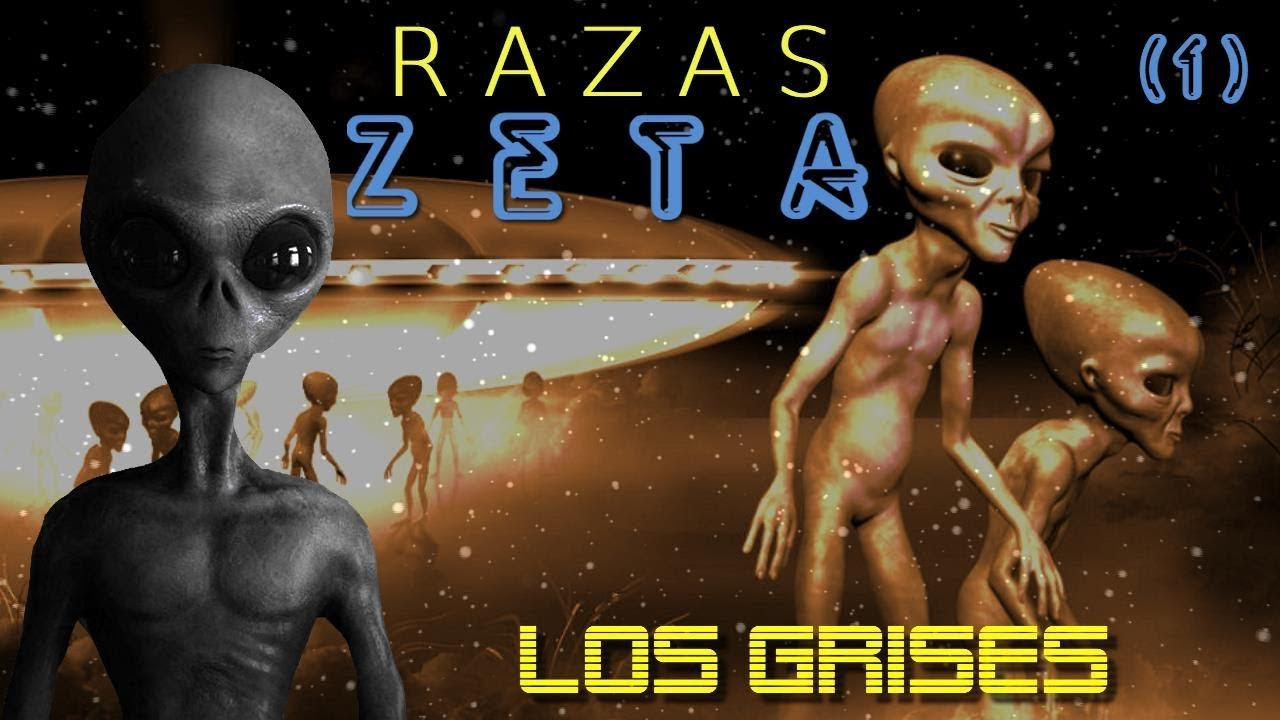 R A Z A S    Z E T A : LOS GRISES – Cap. 1