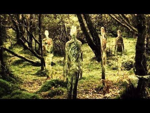 2 extraterrestres vistos en Chile (Testimonios y dibujos reales de los testigos)