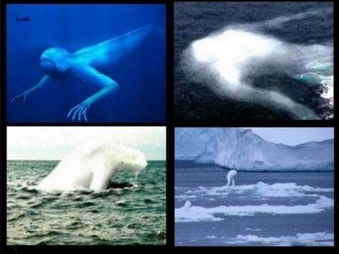 Los Ningen, las Criaturas Humanoides del Ártico