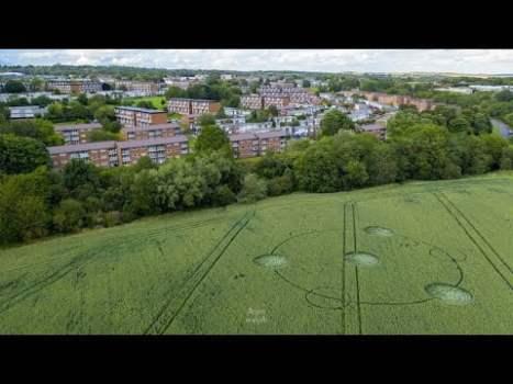 Último informe de círculo de cultivos: Dronfield, Derbyshire, 29 de julio de 2020