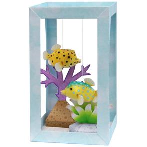 aquarium-boxfish_thl