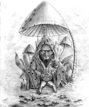 Imagen grafica de un Duende