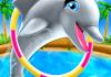 My Dolphin Show APK MOD