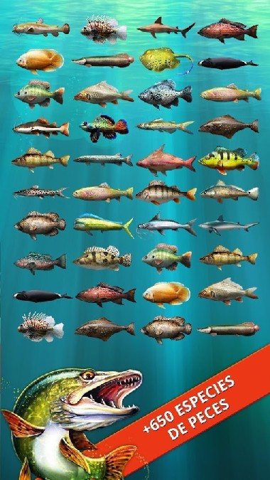Let's Fish Sport Fishing Games. Fishing Simulator APK MOD imagen 3