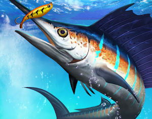 Fishing Championship APK MOD