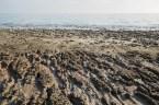 O que restou do Mar de Aral