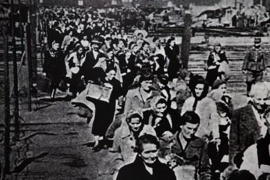 Mais judeus chegando aos campos