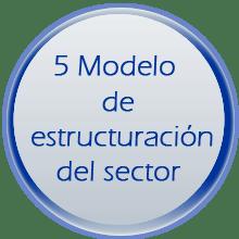 5. MODELO DE ESTRUCTURACION DEL SECTOR