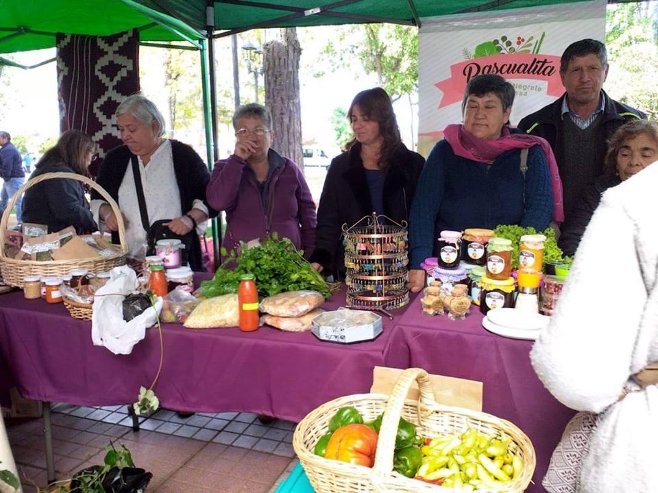 Usuarias de Prodesal participan en celebración del Día de la Cocina Chilena