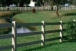 horse fence, vinyl fencing, fences, fence installation, Milwaukee