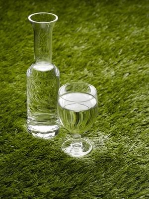 Wasser: Für die Verdauung, Stoffwechsel und um Hunger zu bekämpfen