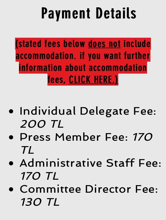 AlphaMUN Payment Details