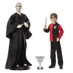 Harry Potter & Lord Voldemort