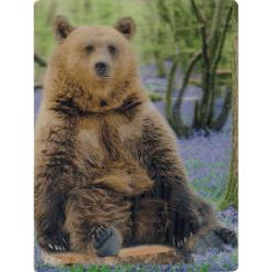 Kortti 3D karhu