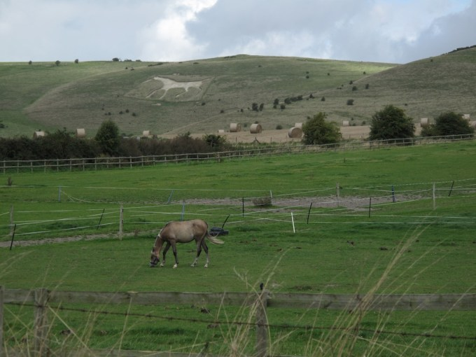 A horse stands in front of an etching of a horse in the hillside