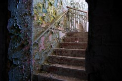 Stairs lead out of cellar between patin-peeling walls