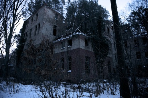A five storey building reduced to a ruin, with a forest growing on the roof. Taken at night in a creepy woodland.