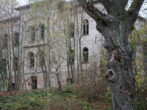 A once grand but now derelict building tries to hide from view behind a juvenile forest
