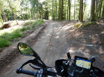 Onboard view from parked bike, showing packed dirt road under trees