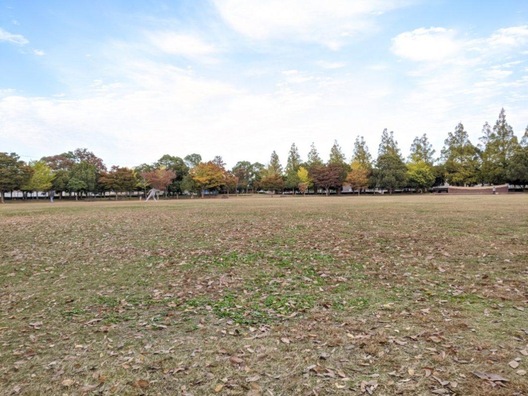 美園中央公園