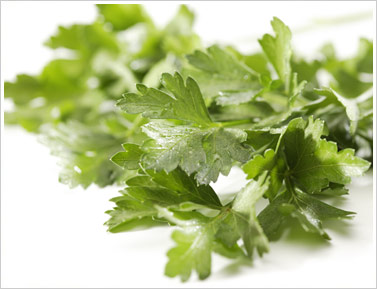 https://i1.wp.com/www.muranakafarm.com/img/inside_products_italian_parsley.jpg