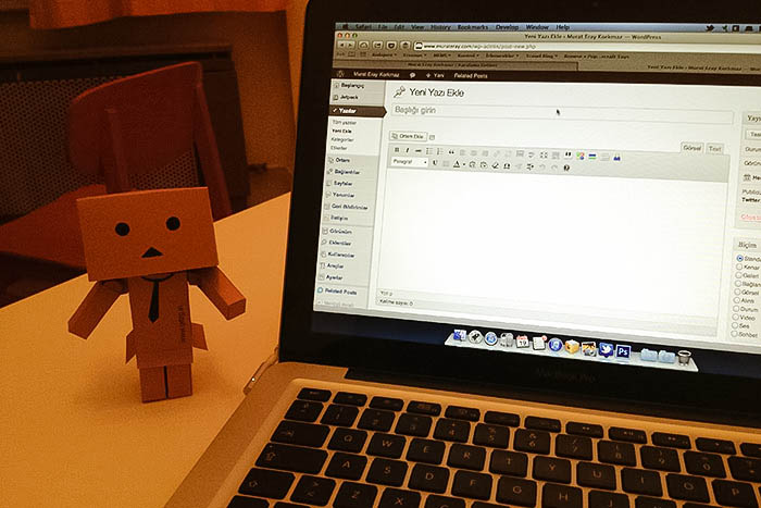 Danbo The Writer