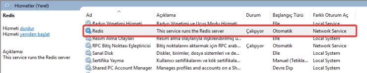 .Net Session Provider İçin Redis Windows Servisi