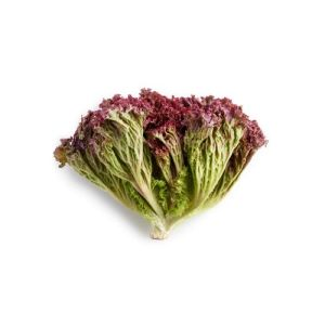 Lollo salat pakket