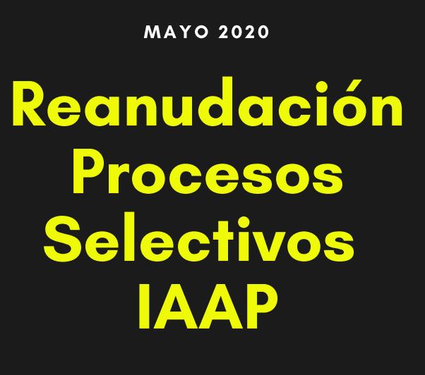 Reanudación IAAP