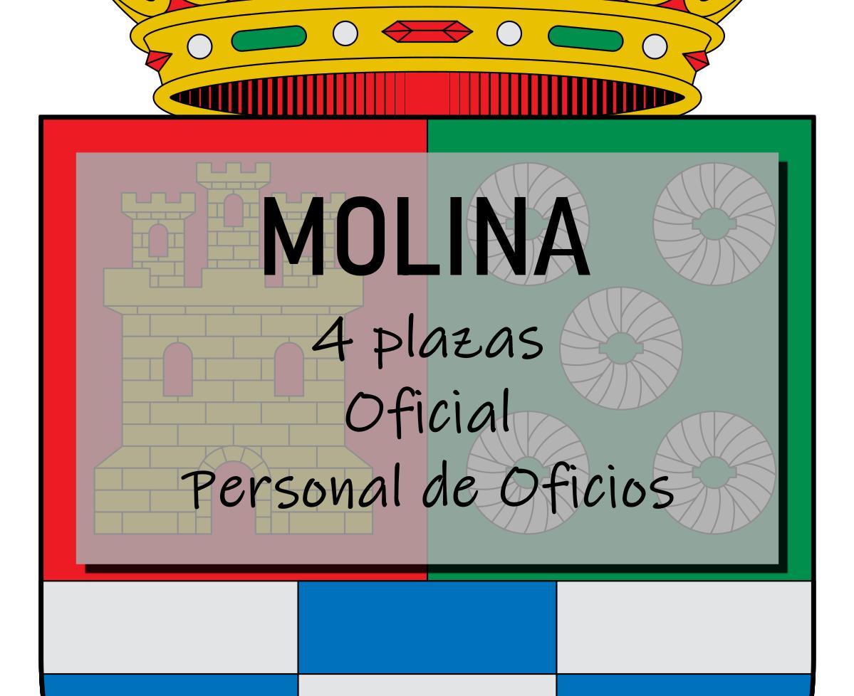 4 plazas Oficial de Oficios Molina