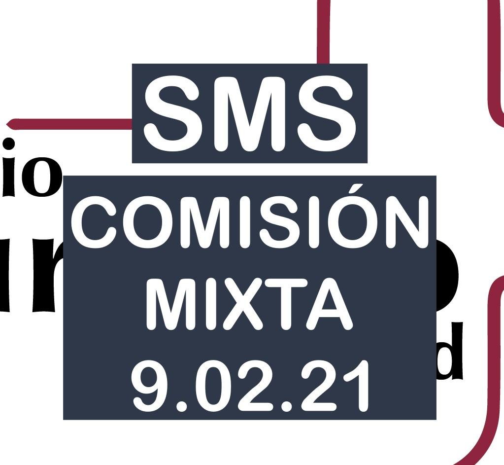 Comisión mixta de la Bolsa del SMS el 9 de febrero de 2021