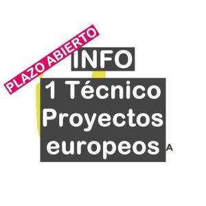 1 Técnico de proyectos europeos para el INFO