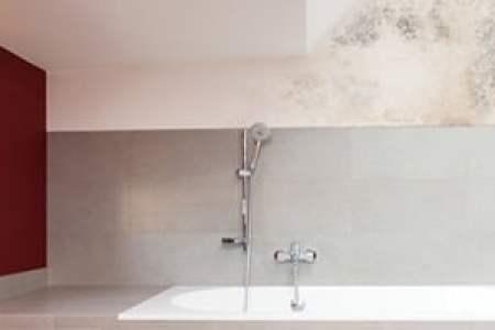 badkamer plafond producten » Beste Huis Inspiratie 2018   Huis ...